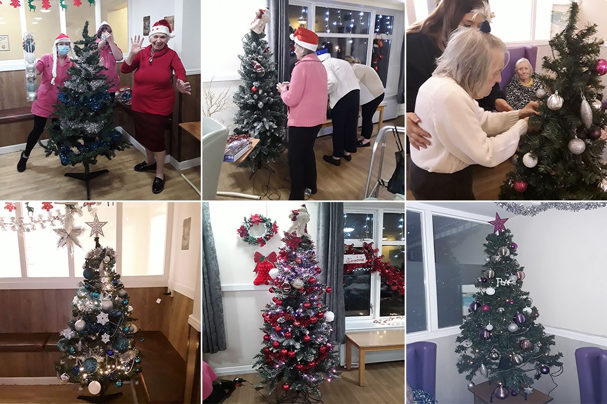 Sonya Lodge Residential Care Home hosts Christmas Tree Decorating Tree Off